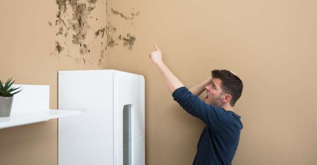 A man surprised pointing finger on the wall full of mold because of humidity